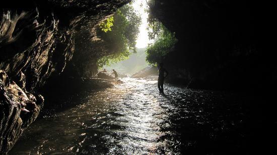 Robber's cave, Dehradun, India http://www.androidinfosys.com/