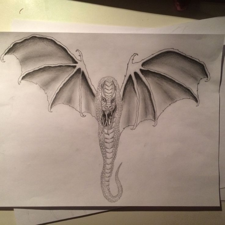 #dragon #sketch #bat #monster