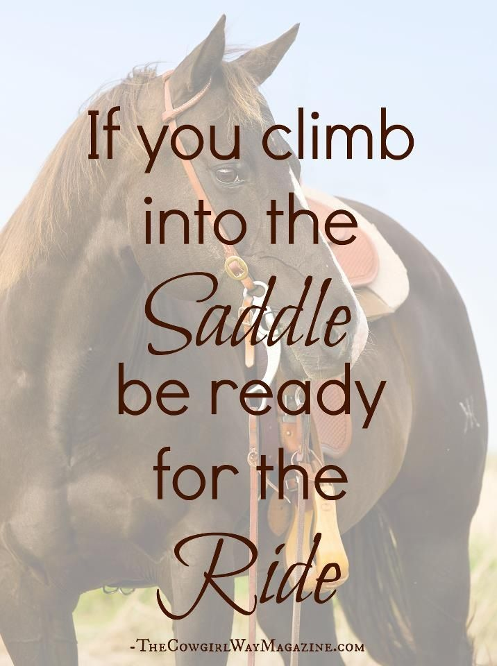 This doesn't just apply to horses. I'm ready for the ride!