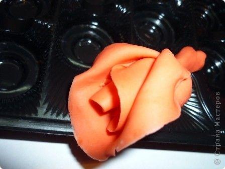 Мастер-класс Лепка Розы по-моему Фарфор холодный фото 1