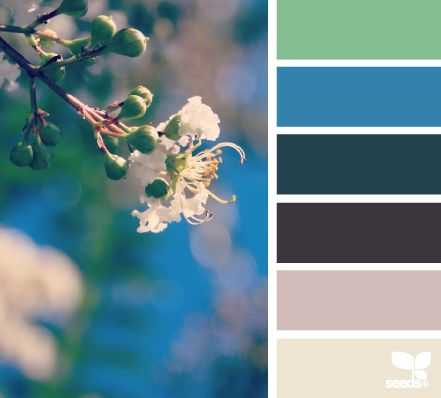 Blooming Brights - Colors for Spring DIY and decorating projects.
