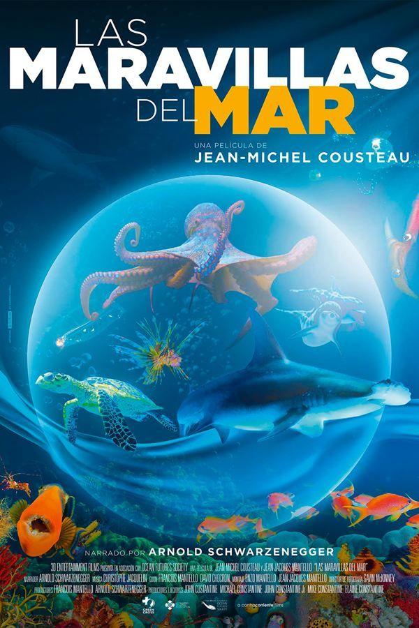 Ver Las Maravillas Del Mar Pelicula Completa Online Descargar Las Maravillas Del Mar Pelicula C Carteleras De Cine Peliculas Completas Ver Peliculas Completas