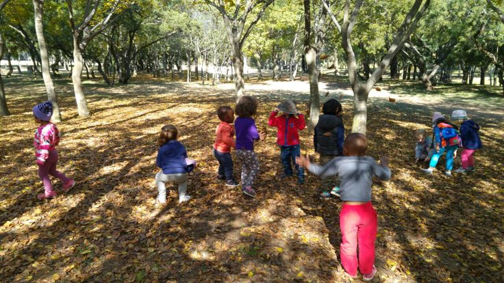 Nature walk with autumn leaves