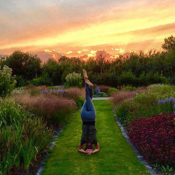 Yoga in the Vlinderhof