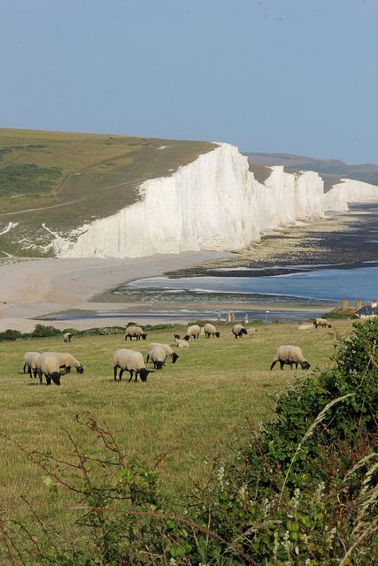 Seven Sisters, South Downs National Park, Sussex, England