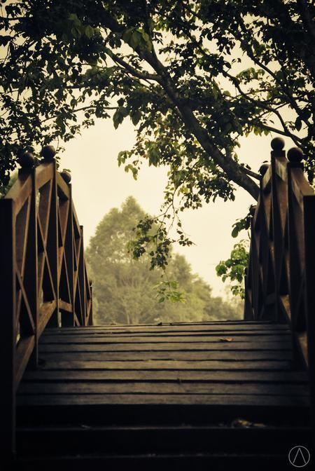 the way Photo by alfred chaniago — National Geographic Your Shot