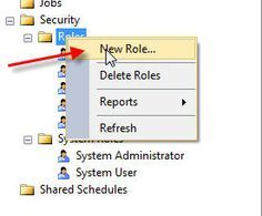 Manage SQL Server Reporting Services in Management Studio