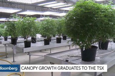 CGC:Toronto Stock Quote - Canopy Growth Corp - Bloomberg Markets