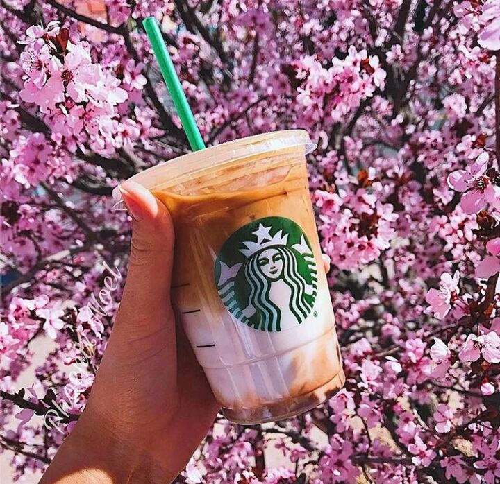Both flowers and macchiatos bend toward light. Iced Coconut milk Mocha Macchiato Starbcuks