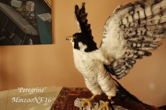 Peregrine Falcon felted sculpture. Life sized bird Ready to ship.  - If you would like to make a reservation for this piece, just ask me for