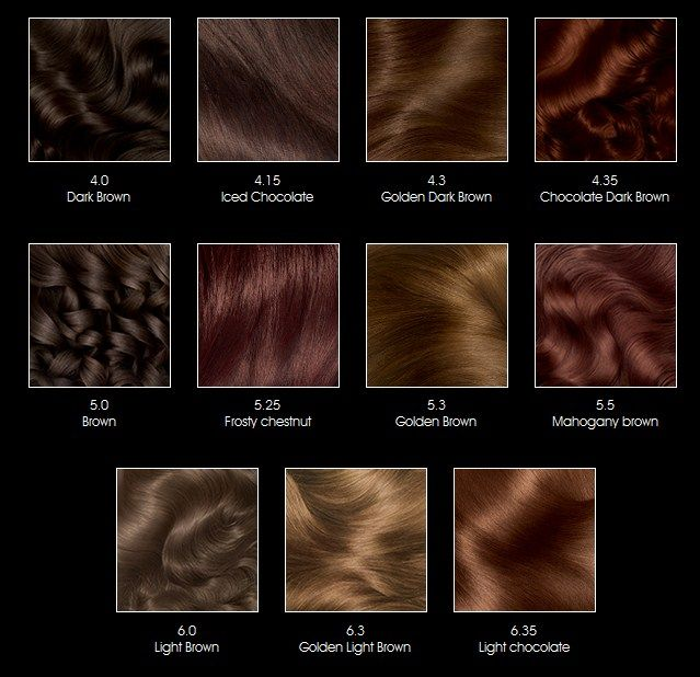 The 25+ best Hair color charts ideas on Pinterest Garnier hair - hair color chart