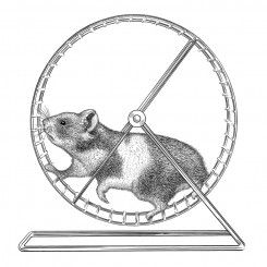 pen and ink animals hamster on wheel