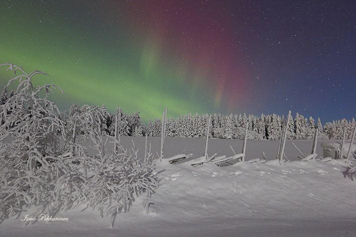 Revontulet Joensuu Heinävaara tammikuu,Northern Lights Joensuu Heinävaara Finland january.Photo Ismo Pekkarinen. #luonto #auroraborealis #finland #talvi #maisema #nature #northernlights #winter #landscape #joensuu