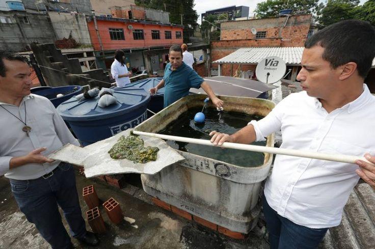 Rogério Lins comanda mutirão de combate à dengue em Osasco