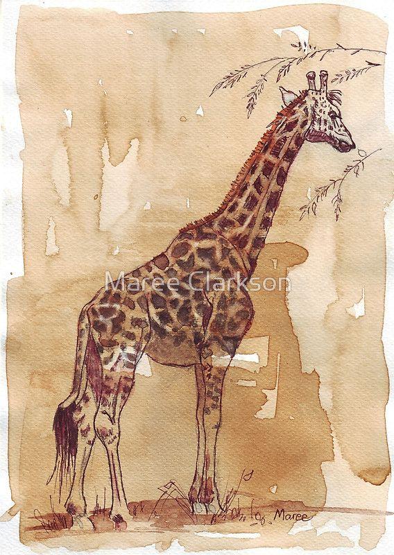 """H3. Esquisse et café encre légère et haute (Nescafé instantané, noir et fort!) Sur Bockingford 300gsm – ██Ɔ. Lien vers mon calendrier """"Art du café – Peintures faites avec du café"""": http: //www.redbubble.com/people/mareeclarkson/calendars/6228850-coffee-art-paintings-done-with-coffee. Les girafes (Giraffa camelopardalis) sont des animaux assez sociaux et se réunissent dans les troupeaux de temps en temps. Cependant, il n&#..."""