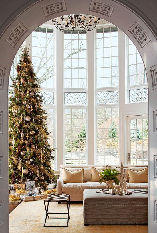 christmas tree + high ceiling + big windows
