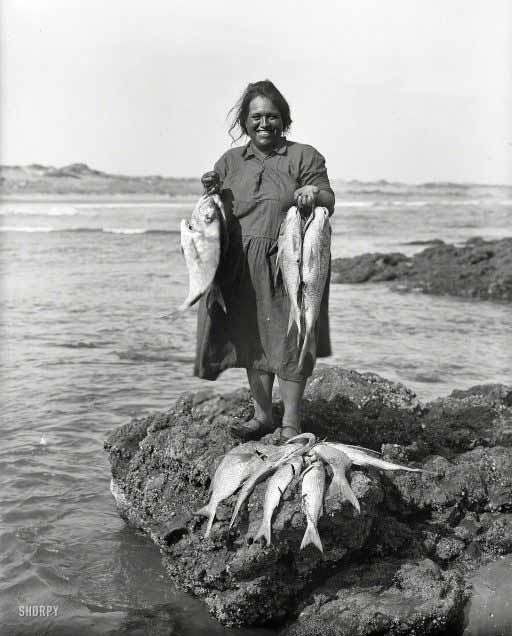 images of fishing in the far north nz - Google Search