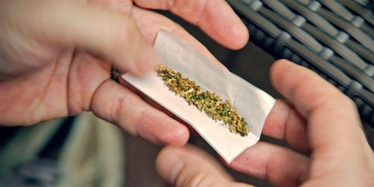 Tiendas que venden productos derivados de la marihuana llegan a 225 - LaTercera (Registro)