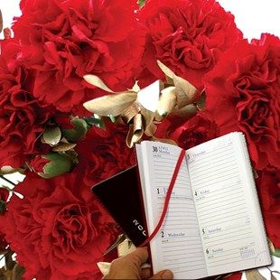Red and Gold Carnations 15 Stems plus Diary Fantastic Festive CarnationsSend this lovely gift delivered with a personalised message card and free flower food! Personalise your message at the checkout basket. Orders must arrive by Sunday 18th De http://www.MightGet.com/january-2017-11/red-and-gold-carnations-15-stems-plus-diary.asp
