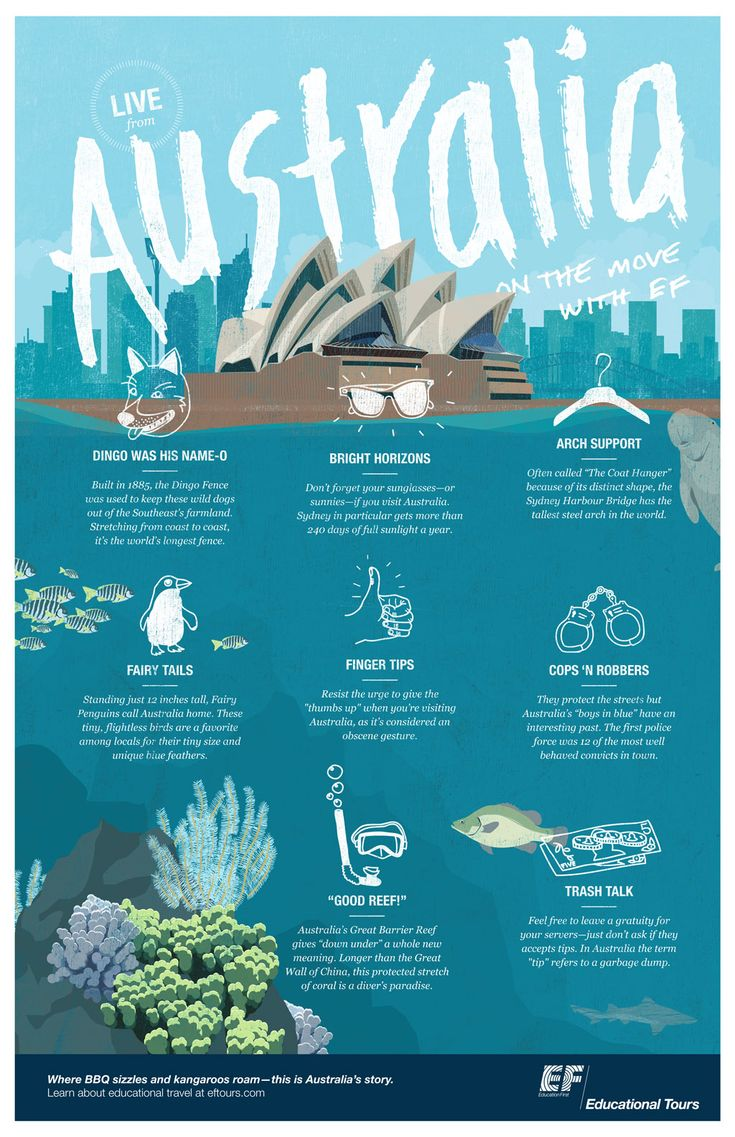 Brush up on your Australia facts before you start your Journey Down Under! Click the link to see more http://eftri.ps/17qKJQa | #Australia #travelinfographic