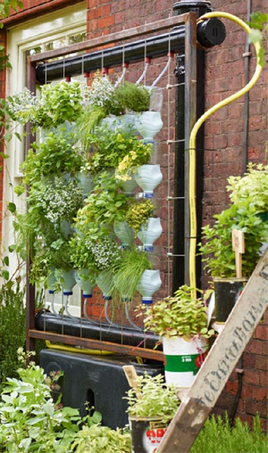 Best 25 Vertical Herb Gardens Ideas On Pinterest