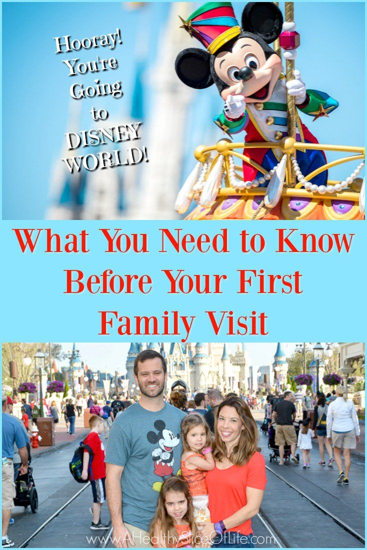 We did some things right and other things I wish I had known. Here is what you need to know before your first family trip to Disney World!