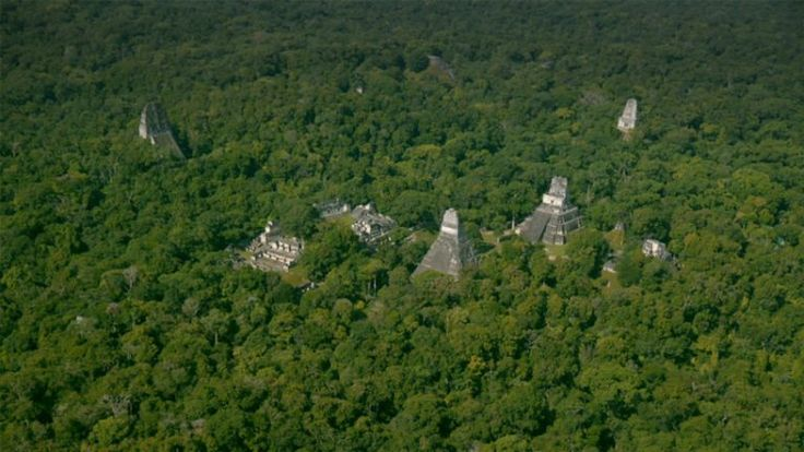 laser technology reveals ancient mayan megalopolis in guatemala