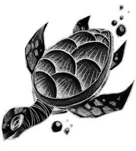 Significato Tatuaggio Tartaruga