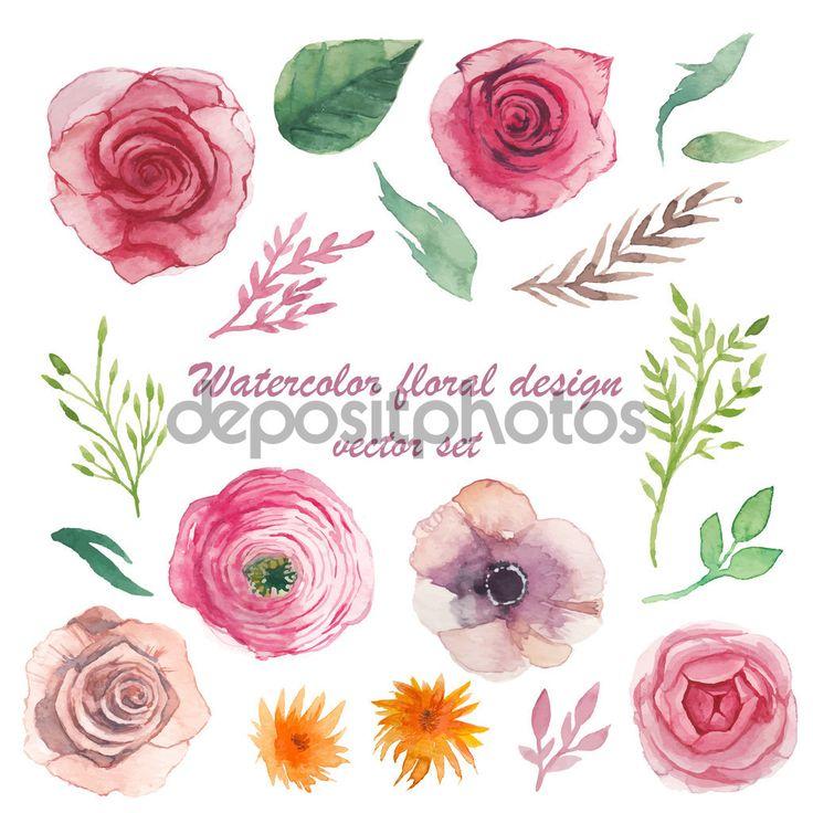 Yükle - Suluboya otlar, Düğünçiçeği, anemon çiçeği, gül — Stok İllüstrasyon #69208849