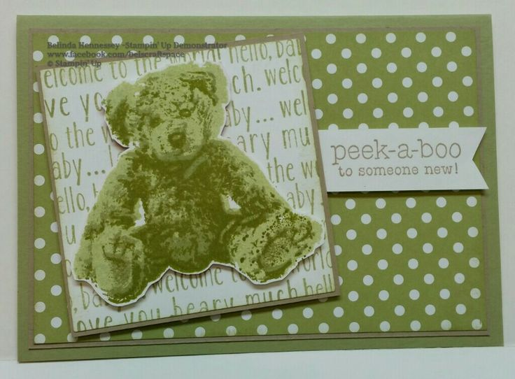 128 best baby bear images on pinterest teddybear bear cubs and baby bear stampin up filmwisefo Choice Image