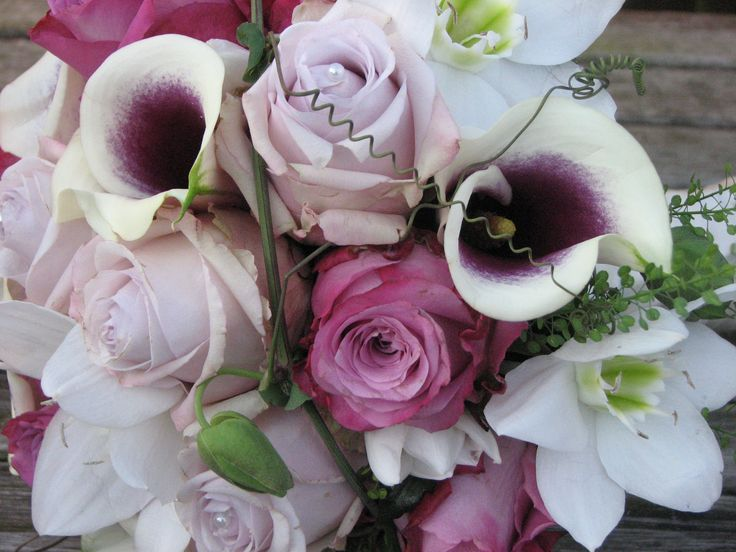 Lila/wit/paars.... een plaatje