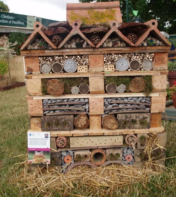 garden wildlife habitat with salvaged materials