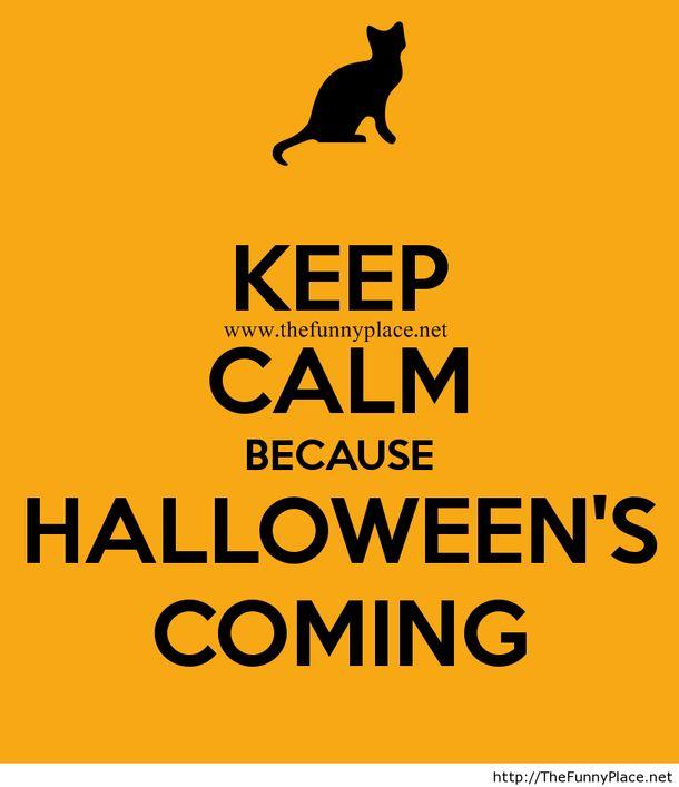 keep calm because halloween is coming keep calm halloween happy halloween halloween quotes halloween quote - Halloween Quotes And Phrases