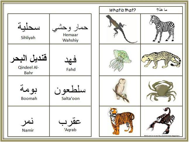 A Muslim Child is Born: Animals: Arabic Vocabulary Activities