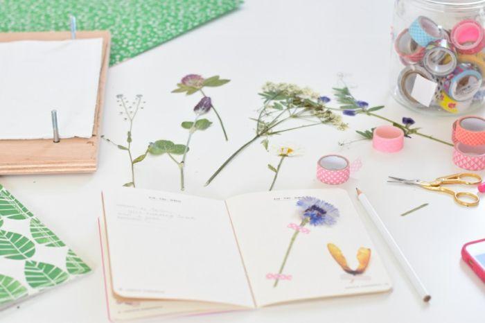 comment faire un herbier idée