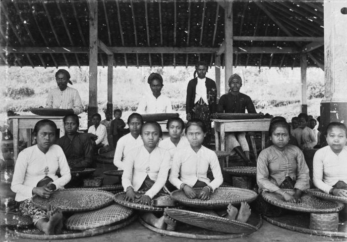 Coffee sorting in Dutch East Indies (now Indonesia).