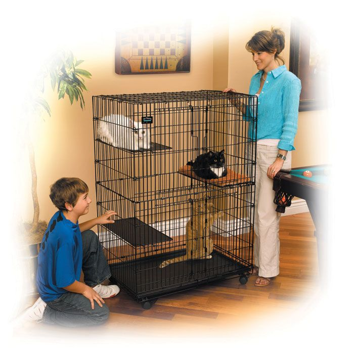 Midwest Cat Playpen - Black | Midwest's Cat Playpen is a roomy and secure enclosure in which you can safely house your favorite feline. Made with strong gauge wire coated in Black ElectroCoat, the cage is lightweight yet strong and cleans easily.