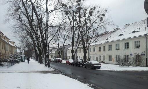 Bielany Przybyszewskiego