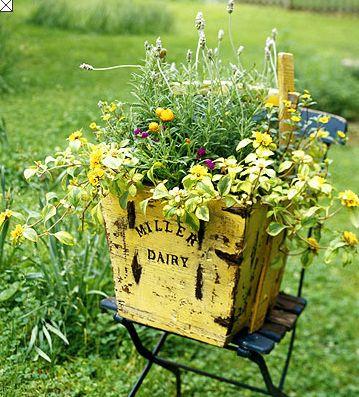 wildflowers in a vintage bin