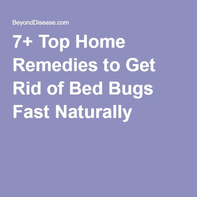 7+ Top Home Remedies to Get Rid of Bed Bugs Fast Naturally