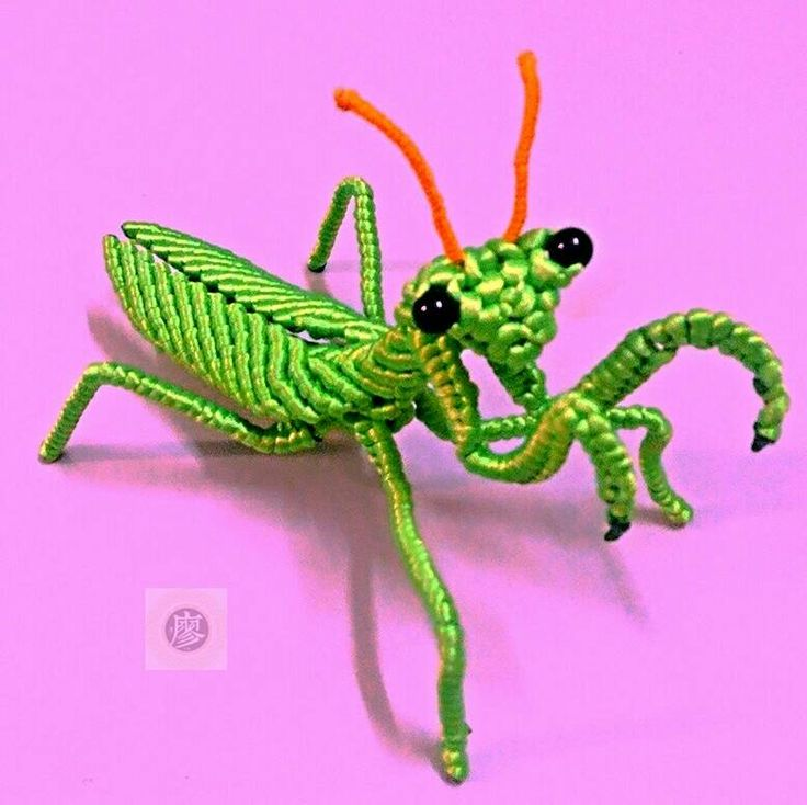Macrame mantis. 螳螂-编法图解-立体绳结教程与交流区-中国结论坛 -
