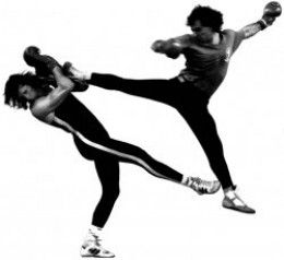 Savate Boxe Francaise is a dynamic combat sport which combines kicking skills with elements of English boxing. It has a long history of around 200 years.