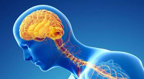 Parkinson. Nuovi successi grazie all'uso della Vitamina B1 integrata con le cure tradizionali