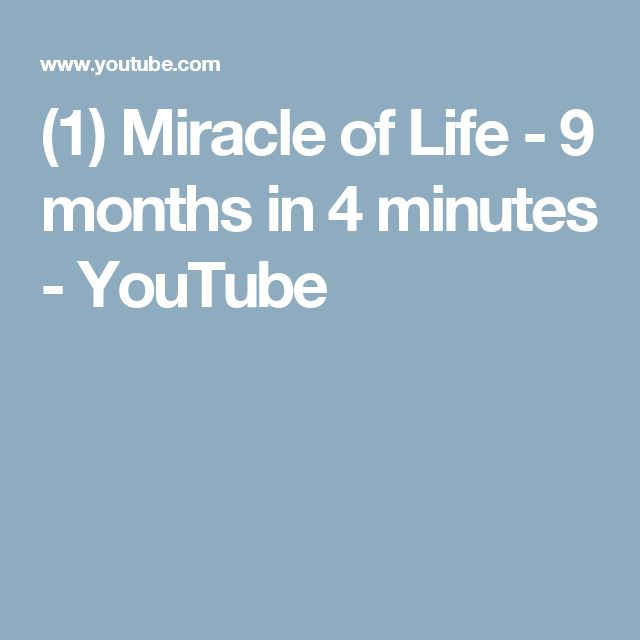 (1) Miracle of Life - 9 months in 4 minutes - YouTube