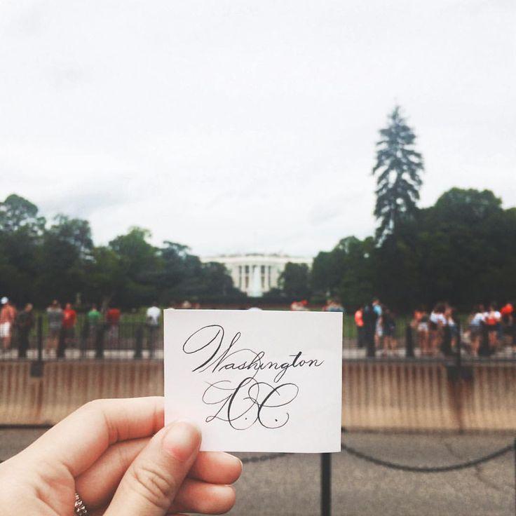 "Colleen on Instagram: "" (P.S. First time doing Spencerian writing  excuse my inconsistency) #WashingtonDC • #WashingtonDaily • #Spencerian • #flourishforum • #thedailytype"""