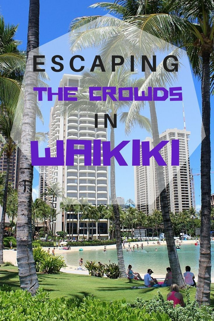 Escaping the Crowds in Waikiki: What I have found after multiple visits to Waikiki is that the tourists tend to congregate in large numbers in certain areas: primarily the main shopping streets and Waikiki beach fronting the big resorts. If you venture out of these areas you can avoid the crush and discover a quieter side to Waikiki - I promise: It Exists | The World on my Necklace #hawaii #waikiki #traveltips