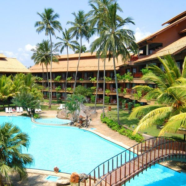 ⭐⭐⭐⭐⭐ Royal Palms Beach Hotel. Летние #скидки от сети Tangerine group. #Лето #srilanka    Стоимость от – 730 $.  ➡ http://www.bontravel.com.ua/tours/hotel-royal-palms-beach/