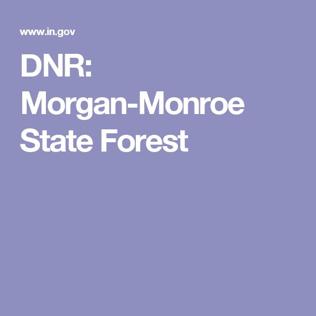 DNR: Morgan-Monroe State Forest