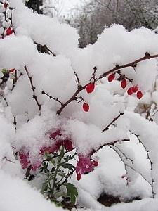 Sous la neige MONTAGNE Nom féminin singulier 1. Forme de relief consistant en élévations importantes de terrains, résultant d'un soulèvement du sol et caractérisé par une forte dénivellation entre sommets et fonds de vallées http://vitrierparis5.urgence-plombier-electricien.fr