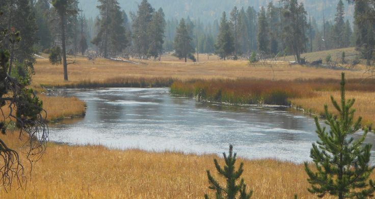 17 best images about where to fish on pinterest montana for Yellowstone national park fishing